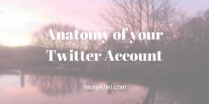 Anatomy of your Twitter Account by Nicky Kriel